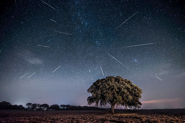 Delta Aquariids and Perseids Meteor Showers Expected this Week