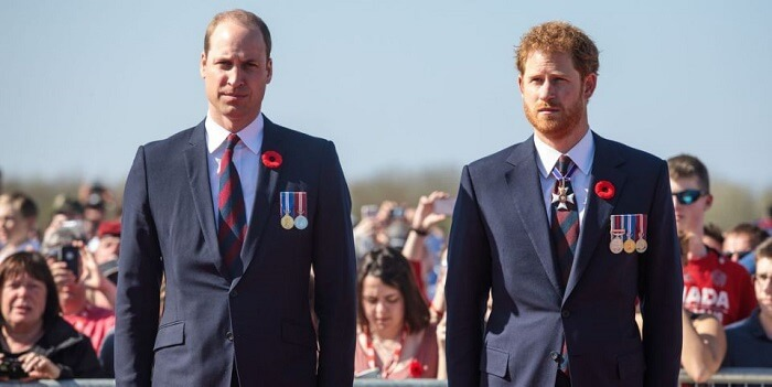 The Difference Between Prince Harry And Prince William Cannot Settle Until Both Are In The UK