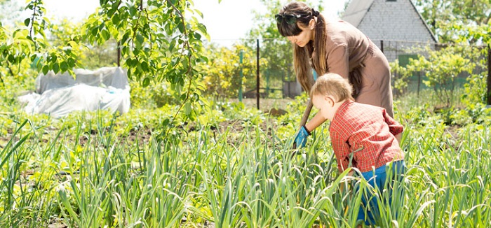 Yard work or gardening can help shed excess calories during the lockdown