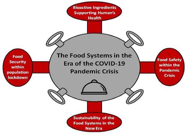 food chains in COVID-19 pandemic