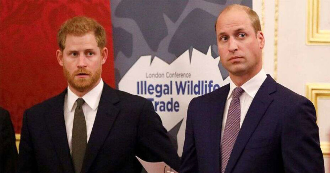 prince harry and prince william cannot settle rift until both are in the uk