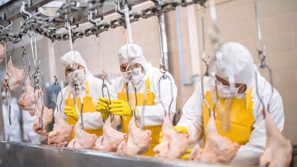 Workers Catching COVID At Tyson Foods