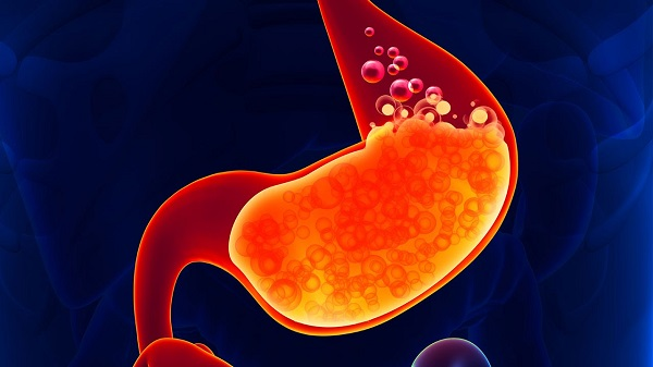 digestive juices and gas is present in the stomach