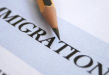 how immigrants help the us economy