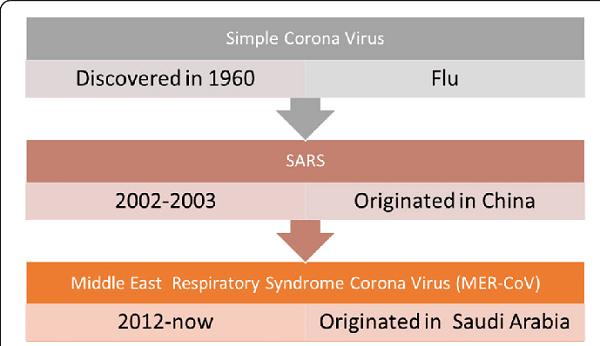 Brief History of The Coronavirus