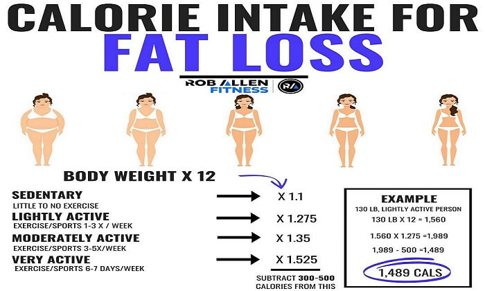 Calorie Intake to Lose Fat