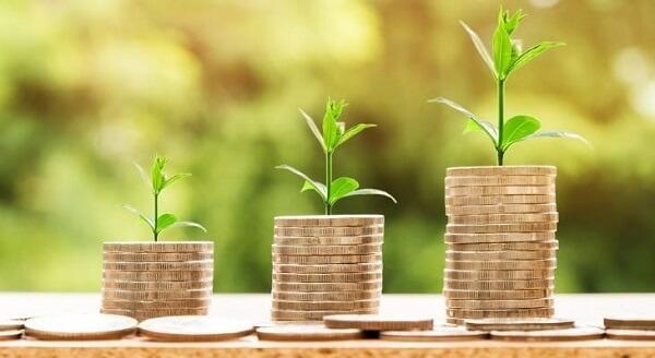 Dividend Reinvestment Plan (DRIP)